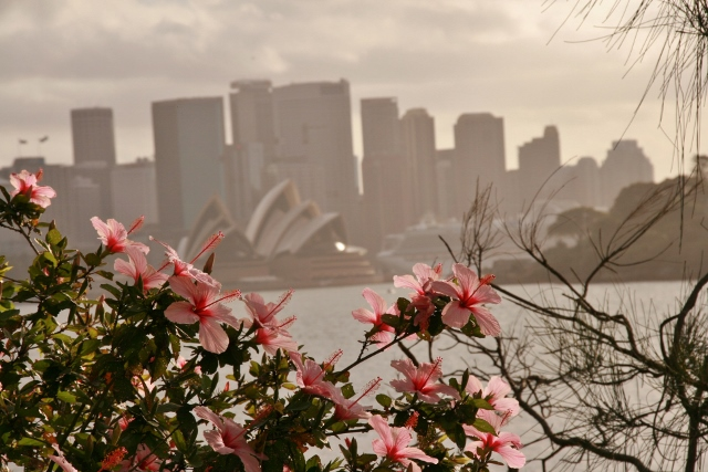 Opera House and city skyline