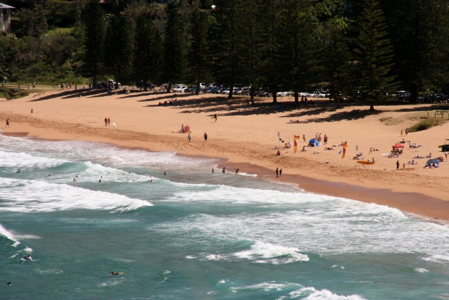 Pink sands of Whale Beach